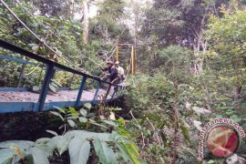 FKH Ingin Kebun Raya Balangan Ikon Hutan Kalimantan