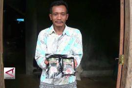 Kopi Robusta Asal Lobang Kabupaten Batang