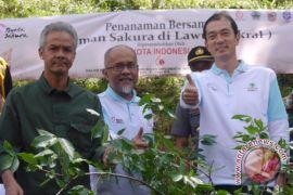 Toyota Indonesia bangun taman sakura di Tawangmangu