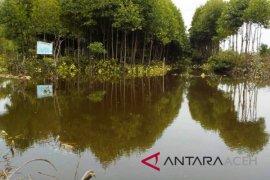 Bale Jurong selamatkan puluhan hektare mangrove
