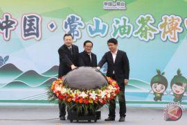 Indeks harga minyak camellia Xinhua-Changshan resmi diluncurkan