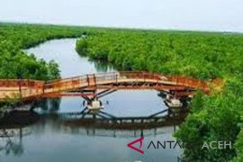 Hutan kota dan bakau ikon wisata Langsa