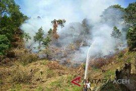 BPBD padamkan api di Gunung Abdya