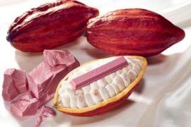 KitKat dinobatkan jadi cokelat batangan terbaik di dunia