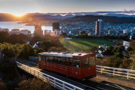 Ratusan tempat makan halal baru di Selandia Baru, ini penyebabnya