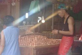 Harga telur ayam ras di Piru turun