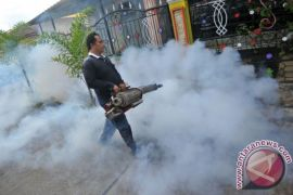 DBD berjangkit di Sampit akibat lingkungan kotor