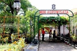 Pemkot Surabaya Optimalkan Mini Agrowisata di Pagesangan