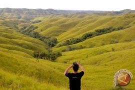 Destinasi wisata populer versi Google: Malang, Labuan Bajo, Sumba