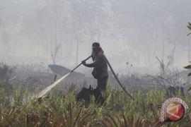 Tiga lokasi kebakaran hutan di Dumai belum bisa dikendalikan