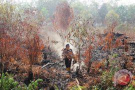 BMKG: 29 titik panas menyebar di Riau