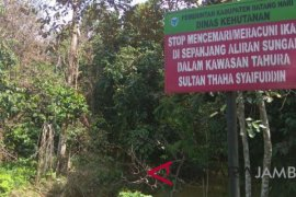 41 persen wilayah Batanghari tutupan hutan
