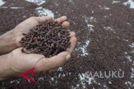 Disperindag upayakan ekspor langsung komoditas perkebunan