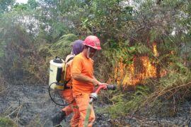 Taman Nasional Bentarum tingkatkan patroli karhutla