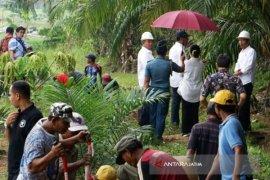 Program Padat Karya Tunai Petani Berlanjut
