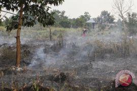 Kebakaran lahan di Riau capai 633 hektare