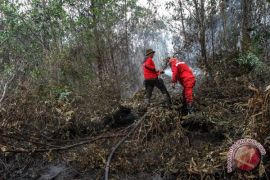 BRG siapkan sekolah ajarkan pembukaan lahan tanpa bakar