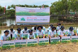 Toyota Indonesia kian hijaukan wisata mangrove di Brebes