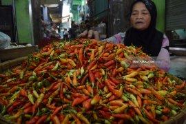 Harga cabai di sejumlah pasar Jatim mulai turun