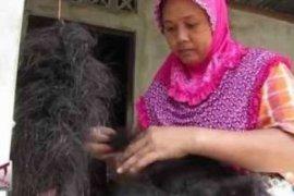 Akan ada Museum Rambut di Purbalingga, Ketiga Setelah Amerika dan Turki