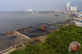 Pelatihan budi daya mangrove di Jakarta