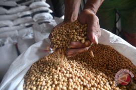 Pemerintah identifikasi 500 komoditas untuk kurangi impor