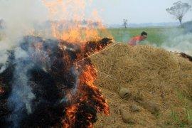 Petani di OKU terus diingatkan larangan membakar sisa panen