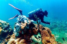 Gandrung Banyuwangi akan Ditampilkan di Dasar Laut
