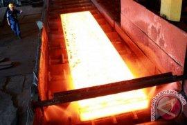 PT Krakatau Steel siapkan belanja modal 555,78 juta dolar AS pada 2018
