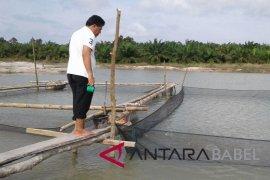 Pokdarwis Deniang kembangkan wisata kolong timah