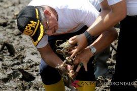 Japesda laporkan dugaan perusakan mangrove ke Pemprov Gorontalo