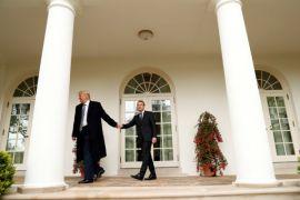 Misteri pohon yang ditanam Macron dan Trump di Gedung Putih