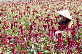 BKP Denpasar raih penghargaan manajemen anti-suap
