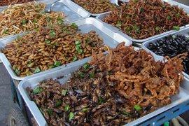 Koki ini berniat angkat serangga sebagai santapan lezat