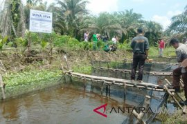 Warga manfaatkan kanal untuk budi daya perikanan