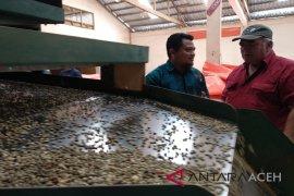 Mantan Bupati: sertifikat Uni Eropa untuk kopi gayo bukti penjaminan mutu