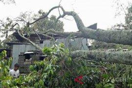 BPBA: cari perlindungan saat angin puting beliung