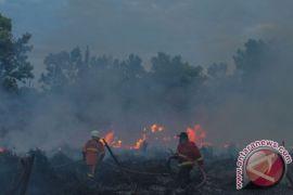 211 titik panas tersebar di Sumatera