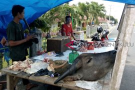 Harga daging kerbau di Mukomuko capai Rp150.000/kg