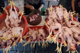 Disperindag gelar operasi pasar kendalikan harga daging ayam