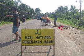 Satgas Temukan Harga Beras Di Tangerang Turun