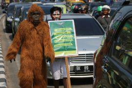 Walhi minta PLTA Batang Toru dibatalkan