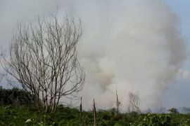 50 hektare lahan gunung di Aceh terbakar