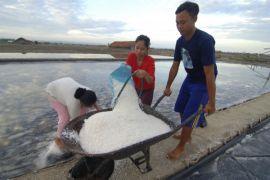 Stok garam di Pamekasan 771 ton