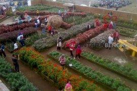 "Sarana pendukung ""Garden Flower"" Festival dibangun di Danau Mas"