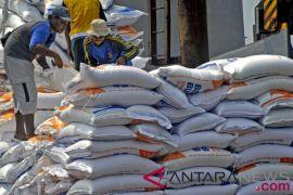 Anggota dewan ini  harapkan jangan lagi ada impor beras