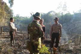Minister appreciates handling of forest fires in W Kalimantan