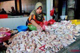 KPPU cari penyebab kenaikan harga daging ayam