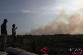 Risiko kebakaran hutan-lahan Riau turun bersama datangnya hujan
