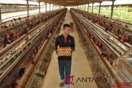 Kementan: Rp600 miliar untuk kembangkan Politeknik Pertanian